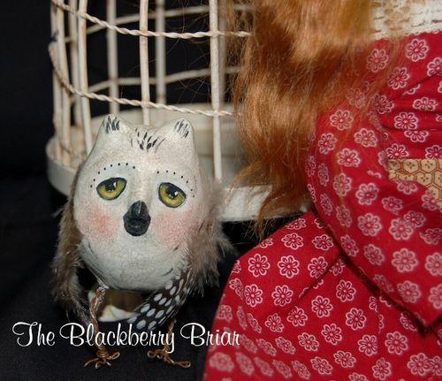 Reddoll owl