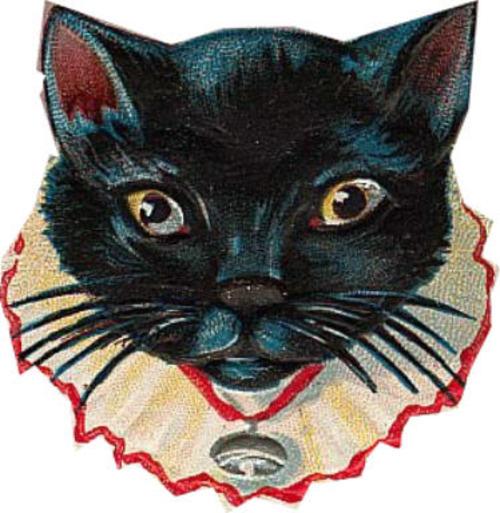 Blkcat